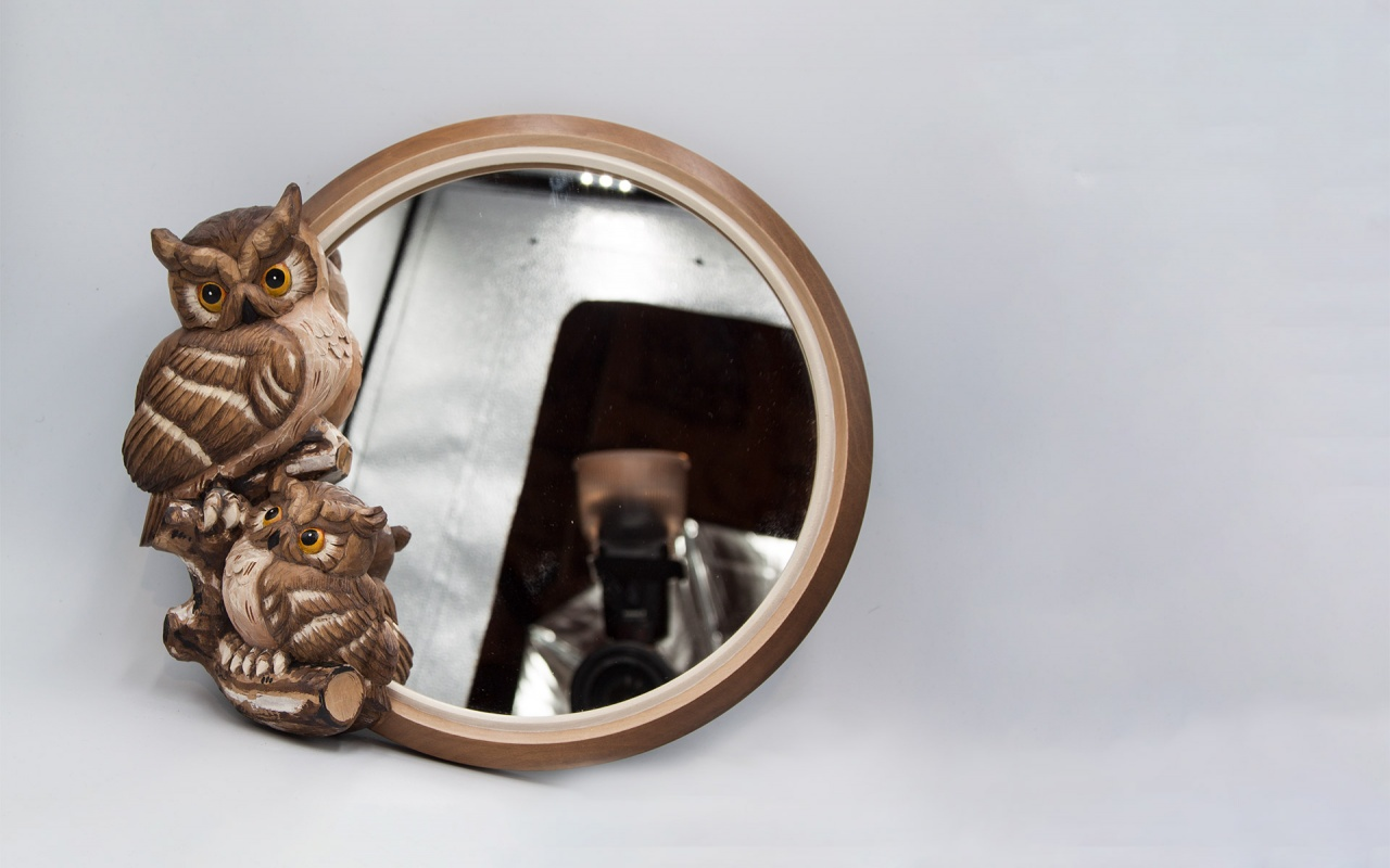 Mirror with owls