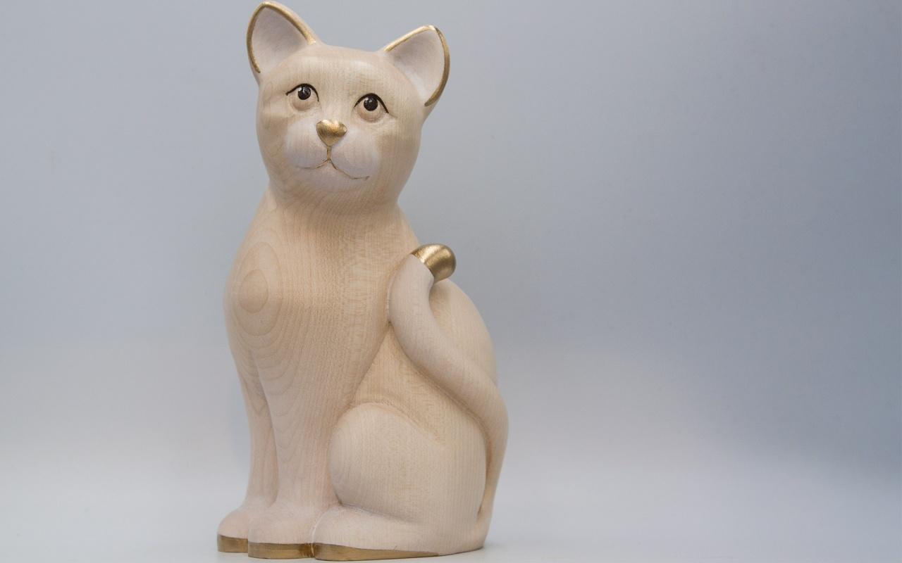 Katze Nico