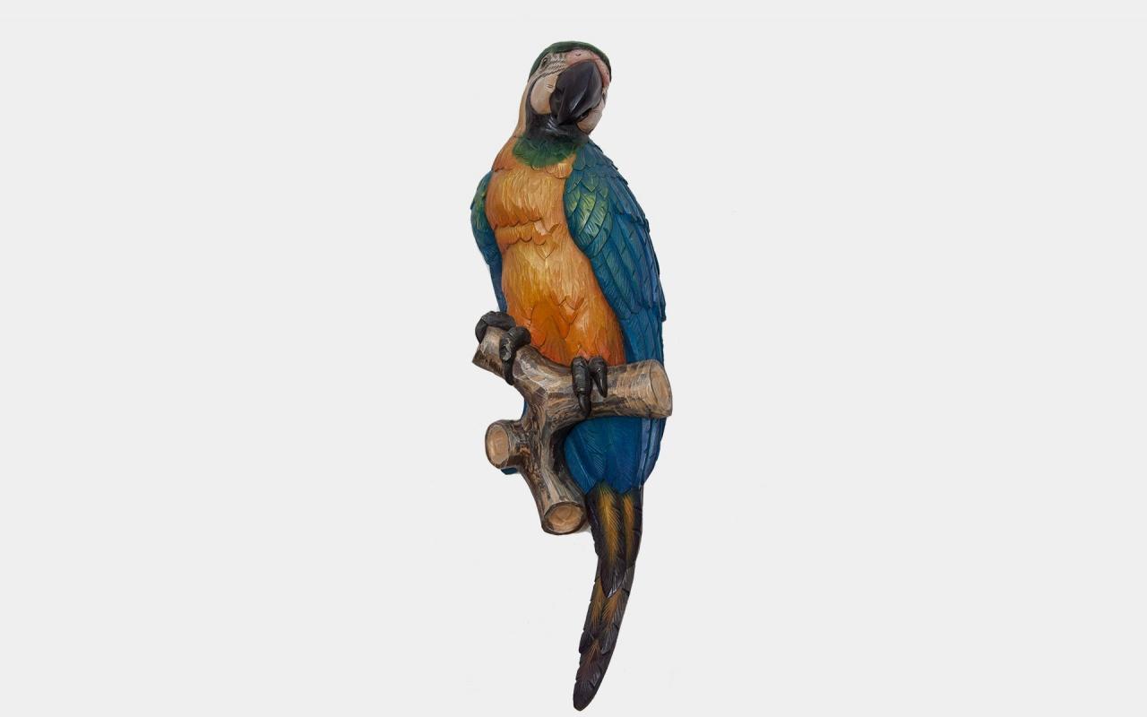 Half relief parrot
